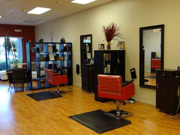 Hair Salon Cut and Style Area