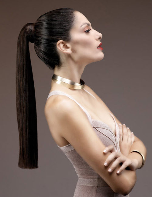 Hairdreams Brunette Long Ponytail Style
