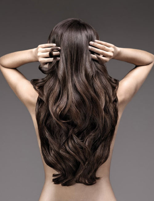 Hairdreams Brunette Long Body Wave Style Back View