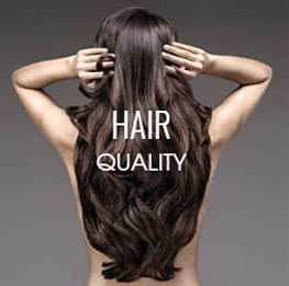 Hairdreams Quality Hair